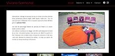 dm création web portfolio